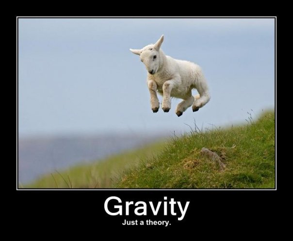 Gravity - Just a theory